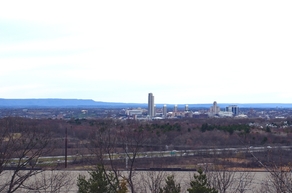 Albany Skyline From Thompson Hill East Greenbush